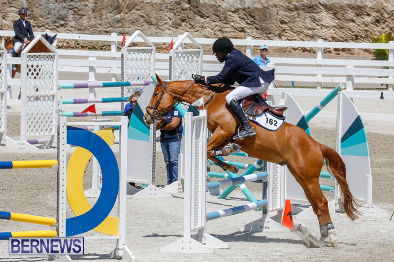 FEI-World-Jumping-Challenge-Bermuda-March-31-2018-8256