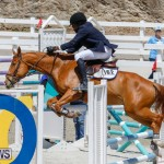 FEI World Jumping Challenge Bermuda, March 31 2018-8257