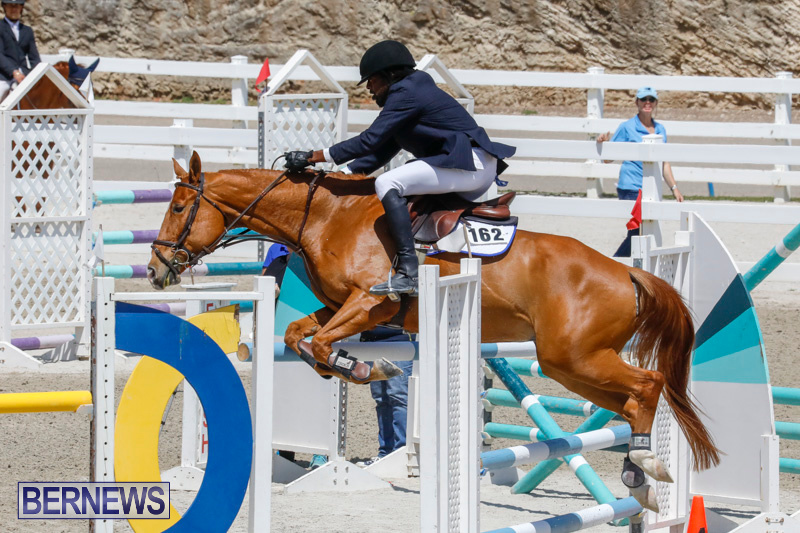 FEI-World-Jumping-Challenge-Bermuda-March-31-2018-8257