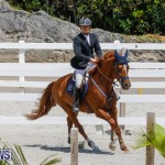 FEI World Jumping Challenge Bermuda, March 31 2018-8259