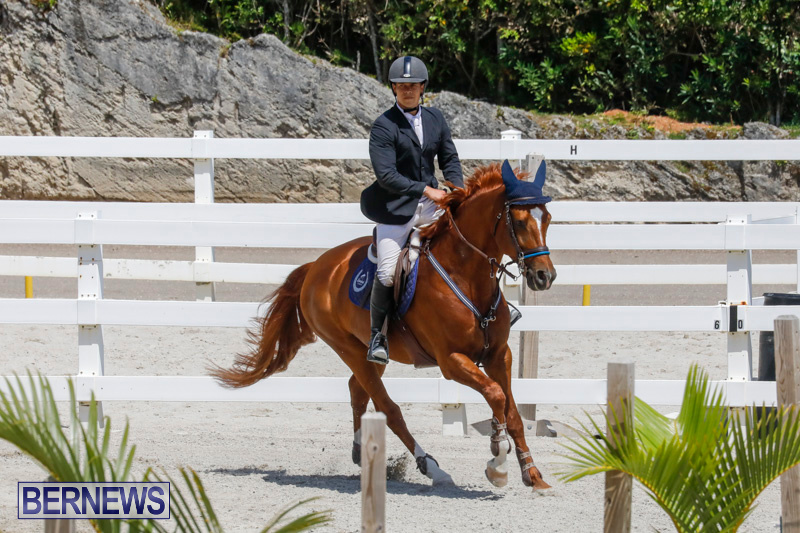FEI-World-Jumping-Challenge-Bermuda-March-31-2018-8259