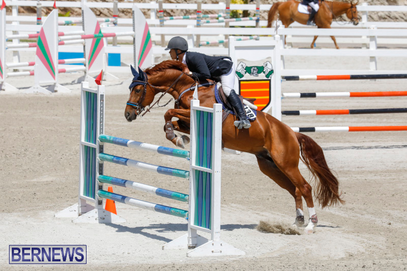 FEI-World-Jumping-Challenge-Bermuda-March-31-2018-8264
