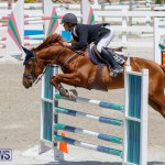 FEI World Jumping Challenge Bermuda, March 31 2018-8265