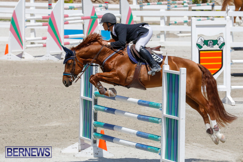 FEI-World-Jumping-Challenge-Bermuda-March-31-2018-8265