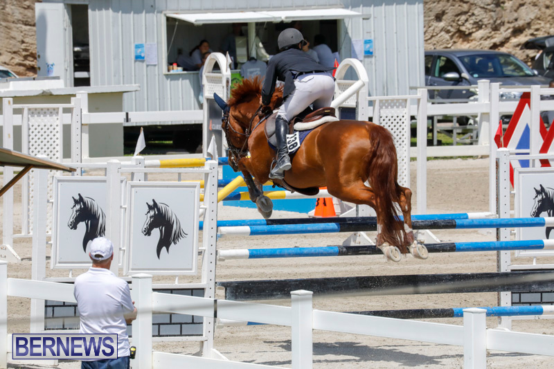 FEI-World-Jumping-Challenge-Bermuda-March-31-2018-8271