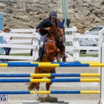 FEI World Jumping Challenge Bermuda, March 31 2018-8274
