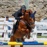 FEI World Jumping Challenge Bermuda, March 31 2018-8275