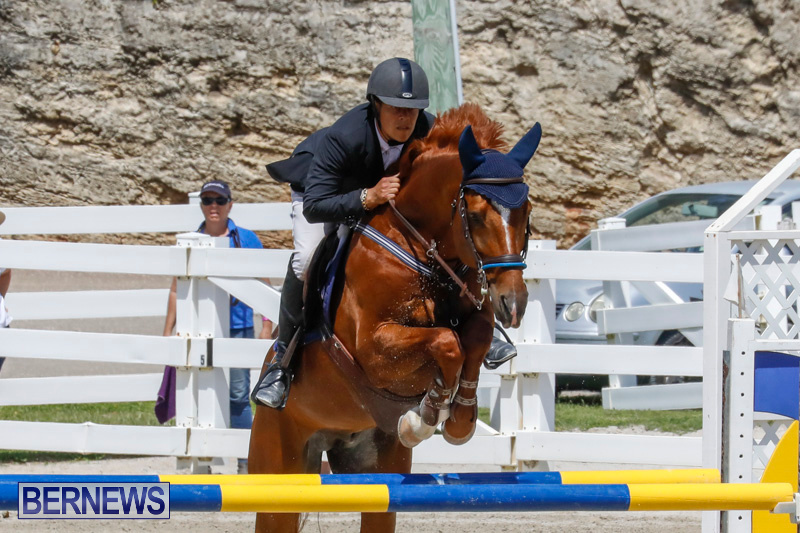 FEI-World-Jumping-Challenge-Bermuda-March-31-2018-8275