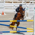 FEI World Jumping Challenge Bermuda, March 31 2018-8281