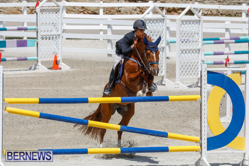 FEI-World-Jumping-Challenge-Bermuda-March-31-2018-8281