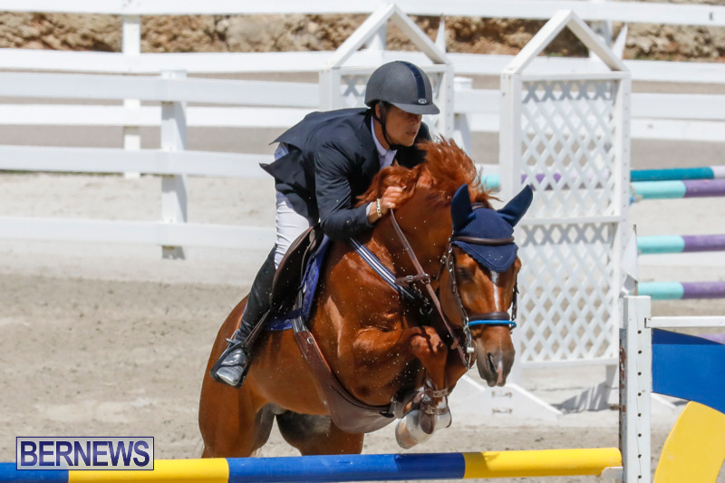 FEI-World-Jumping-Challenge-Bermuda-March-31-2018-8282