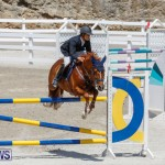 FEI World Jumping Challenge Bermuda, March 31 2018-8283