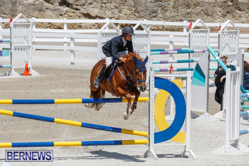FEI-World-Jumping-Challenge-Bermuda-March-31-2018-8283
