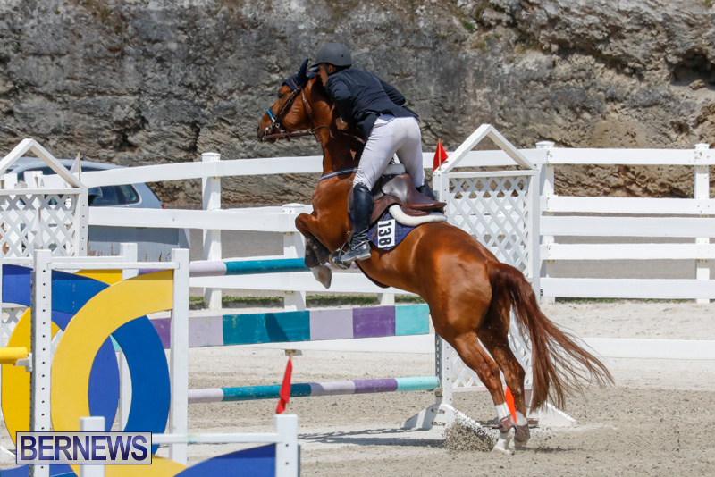 FEI-World-Jumping-Challenge-Bermuda-March-31-2018-8291