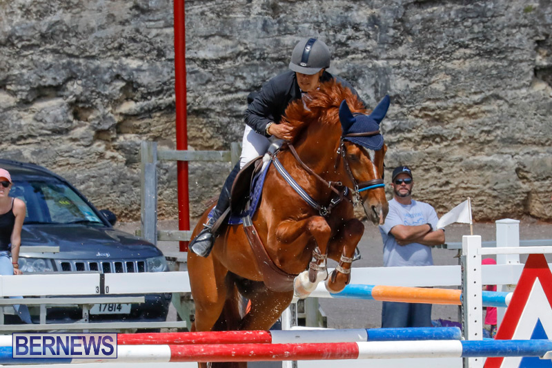 FEI-World-Jumping-Challenge-Bermuda-March-31-2018-8297