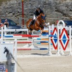 FEI World Jumping Challenge Bermuda, March 31 2018-8298