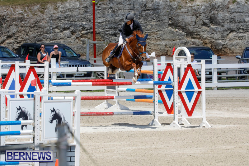 FEI-World-Jumping-Challenge-Bermuda-March-31-2018-8298