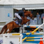 FEI World Jumping Challenge Bermuda, March 31 2018-8305
