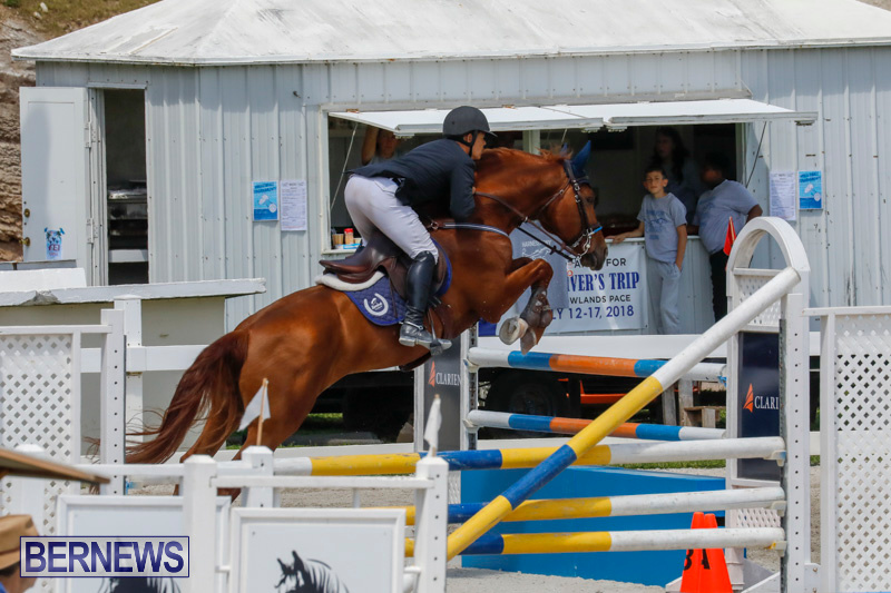 FEI-World-Jumping-Challenge-Bermuda-March-31-2018-8305