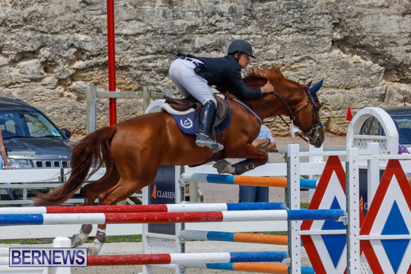 FEI-World-Jumping-Challenge-Bermuda-March-31-2018-8309