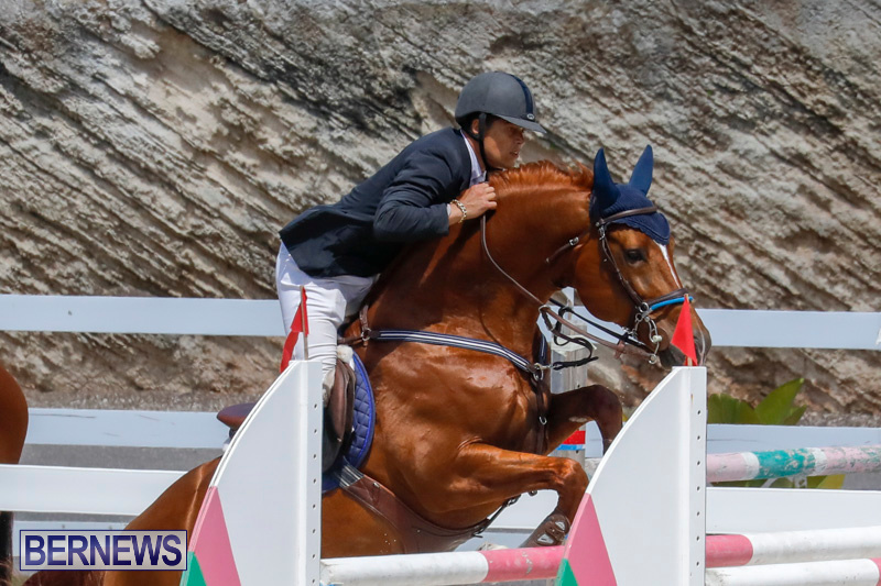 FEI-World-Jumping-Challenge-Bermuda-March-31-2018-8314