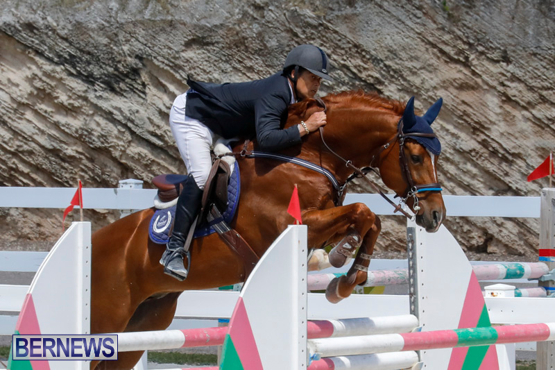 FEI-World-Jumping-Challenge-Bermuda-March-31-2018-8315
