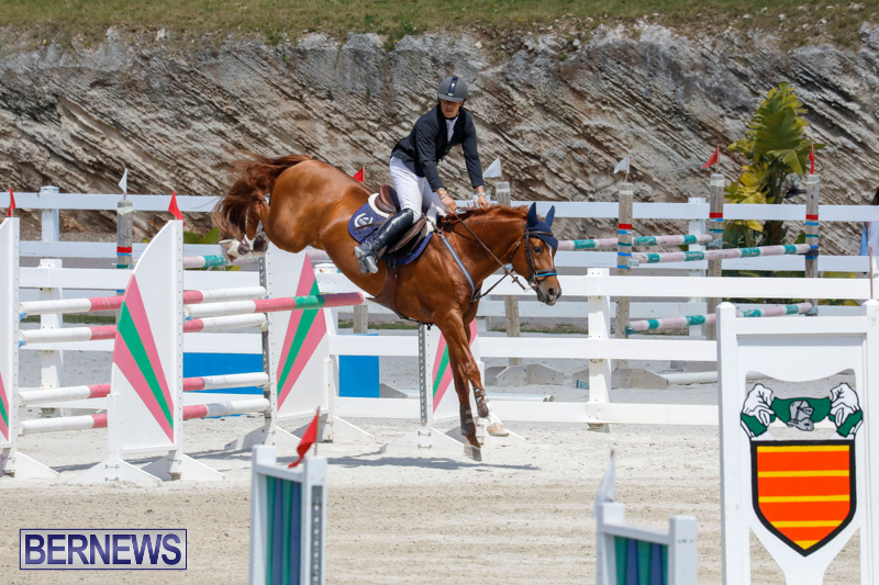 FEI-World-Jumping-Challenge-Bermuda-March-31-2018-8318