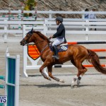 FEI World Jumping Challenge Bermuda, March 31 2018-8321
