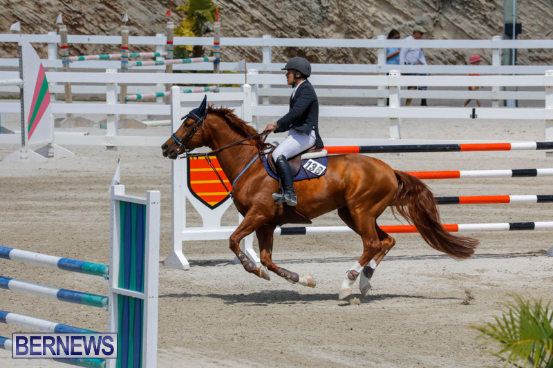 FEI-World-Jumping-Challenge-Bermuda-March-31-2018-8321