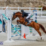 FEI World Jumping Challenge Bermuda, March 31 2018-8323