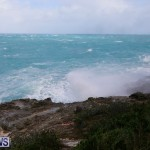 North Shore Shelley bay Salt Spray 03 Mar (7)