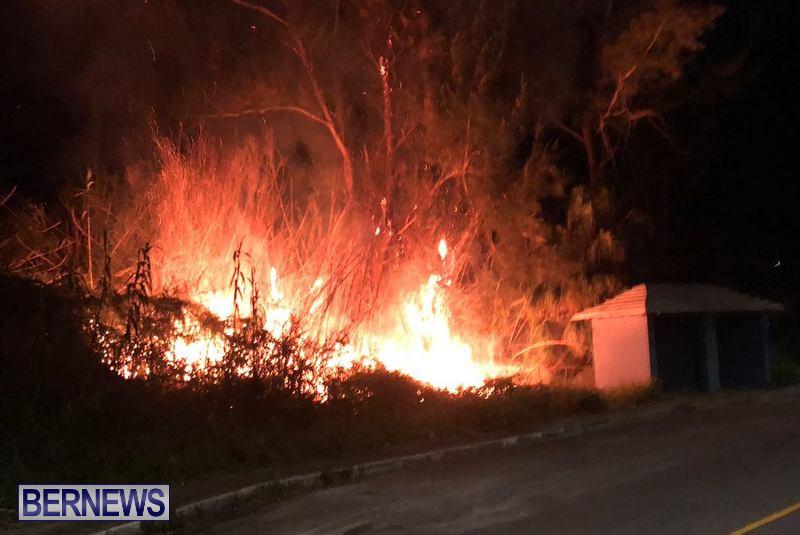 Pembroke Brush Fire Bermuda, March 19 2018 (2)