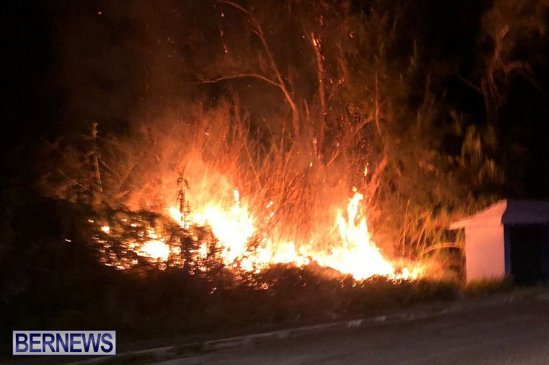 Pembroke Brush Fire Bermuda, March 19 2018 (4)
