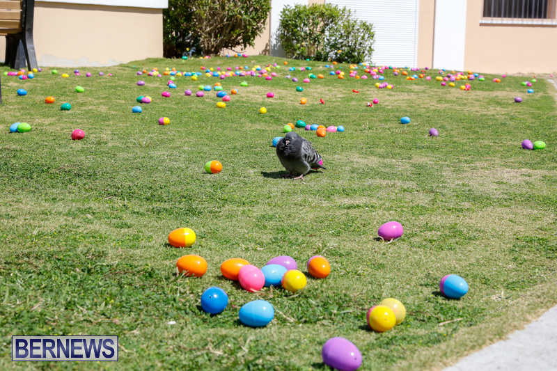 Premier's-Annual-Children's-Easter-Egg-Hunt-Bermuda-March-24-2018-5252