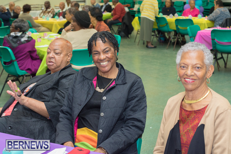 Seniors-Tea-at-Whitney-Bermuda-March-23-2018-26