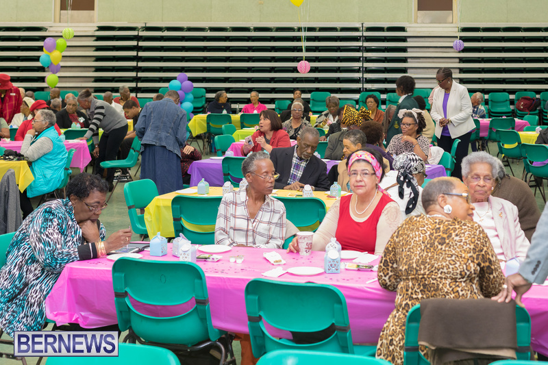 Seniors-Tea-at-Whitney-Bermuda-March-23-2018-4