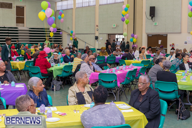 Seniors-Tea-at-Whitney-Bermuda-March-23-2018-49