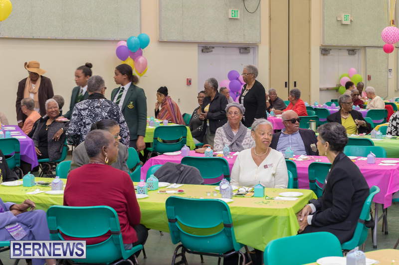 Seniors-Tea-at-Whitney-Bermuda-March-23-2018-5