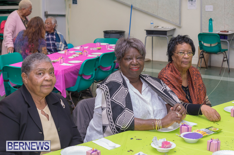 Seniors-Tea-at-Whitney-Bermuda-March-23-2018-9