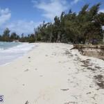 Shelly Bay Beach Park Bermuda March 5 2018 (15)