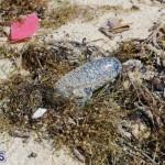 Shelly Bay Beach Park Bermuda March 5 2018 (16)