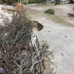 Shelly Bay Beach Park Bermuda March 5 2018 (4)