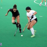 hockey Bermuda March 28 2018 (11)