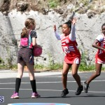 netball Bermuda March 21 2018 (1)