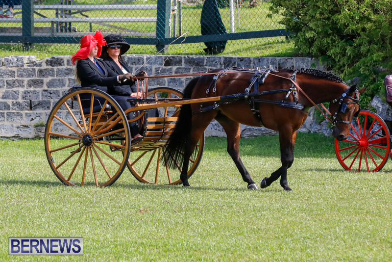Ag-Show-at-Botanical-Gardens-Bermuda-April-21-2018-2385