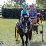 Ag Show at Botanical Gardens Bermuda, April 21 2018-2394