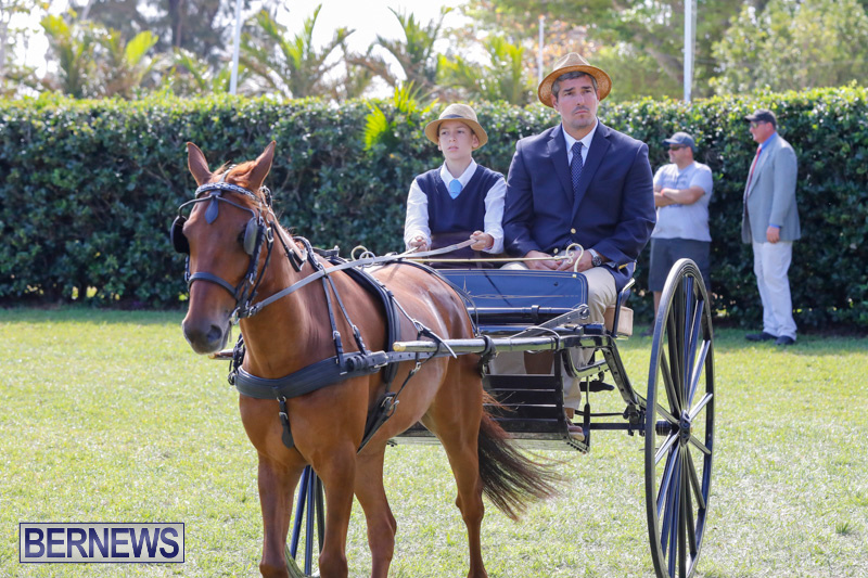 Ag-Show-at-Botanical-Gardens-Bermuda-April-21-2018-2399