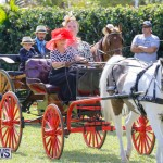 Ag Show at Botanical Gardens Bermuda, April 21 2018-2417