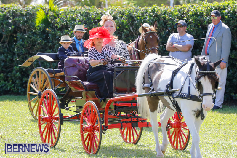 Ag-Show-at-Botanical-Gardens-Bermuda-April-21-2018-2417