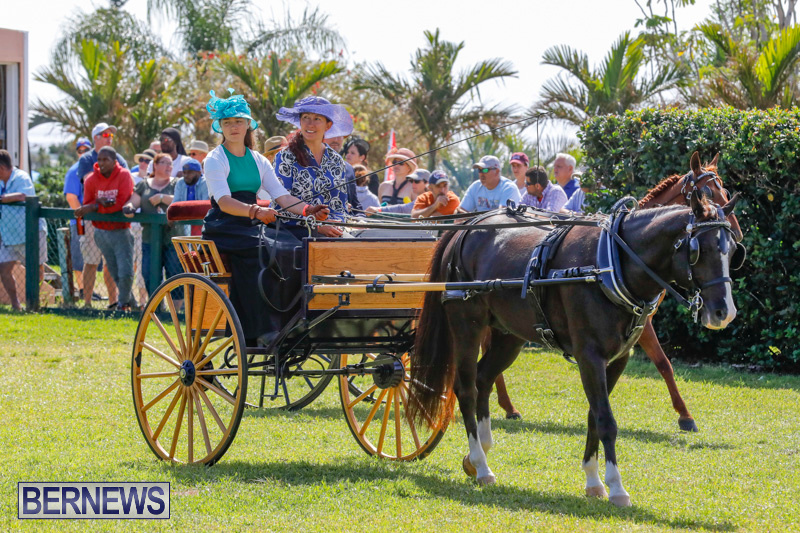 Ag-Show-at-Botanical-Gardens-Bermuda-April-21-2018-2441